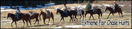 Horse Camp Hunts
